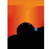 Olarys Black logo