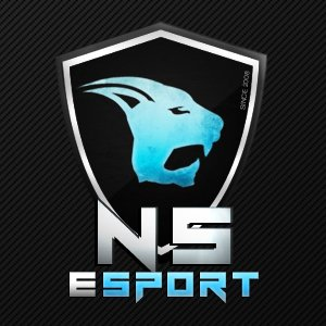 Night's Soldiers eSport logo