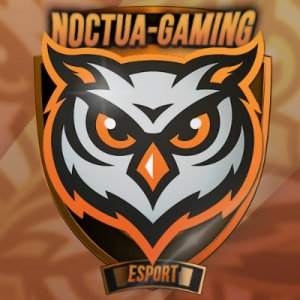 Noctua-Gaming icon