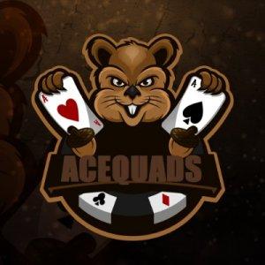 acequads icon