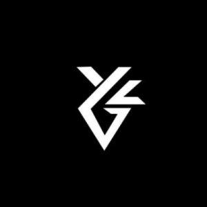NDVX Esport icon