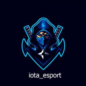 iota_esport logo