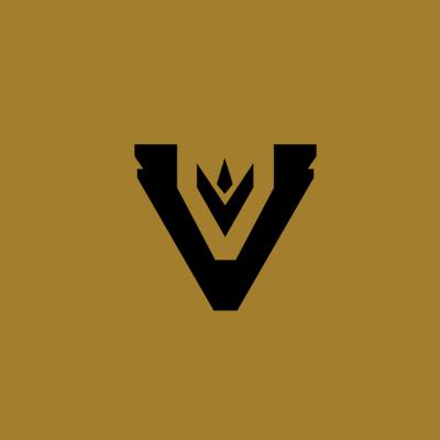 Team Vitreous logo